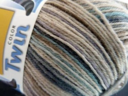 Regia 4 Ply Wool  Twin Color Sock Yarn - Daniela. #7312
