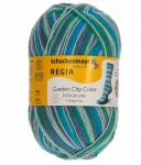 Dee Hardwicke 4 Ply Wool Garden City Sock Yarn - Clematis