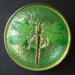 Dragonfly Buttons - Apple