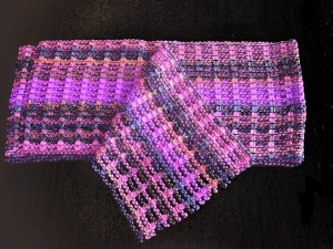 Trendsetter Multi Color Scarf Mesh